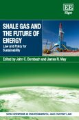 Shale Gas and the Future of Energy