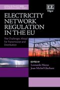 Cover Electricity Network Regulation in the EU