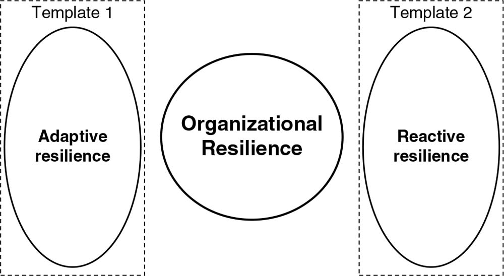 Resilience in management and organization studies : Elgar