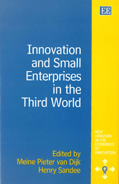 Innovation and Small Enterprises in the Third World