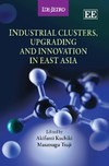 Industrial Clusters, Upgrading and Innovation in East Asia