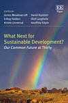 What Next for Sustainable Development?