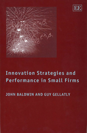 Innovation Strategies and Performance in Small Firms