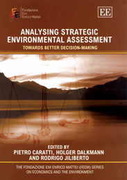 Analysing Strategic Environmental Assessment