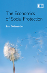The Economics of Social Protection